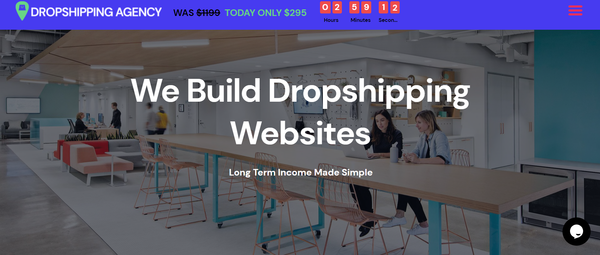 DropshippingAgency.com - Own Your Own Dropshipping Agency Business