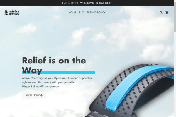 misterspinecy.com - Beautifuly designed HEALTH store | US Supplier