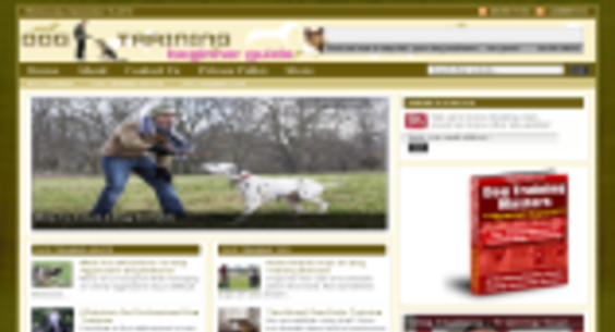 Website regular 106529