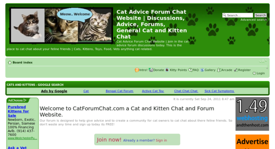 Website regular 2648195