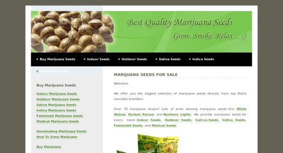 Website regular 2652081