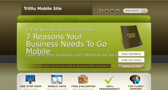 Website regular 2658334