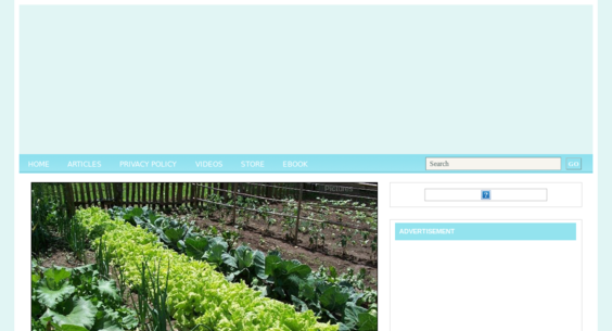 Website regular 2745863
