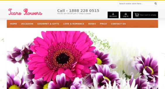 Website regular 2747520