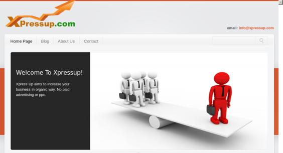 Website regular 2748060