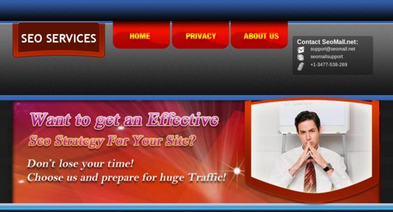 Website regular 2754106