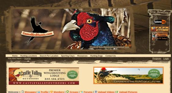 Website regular 2756594