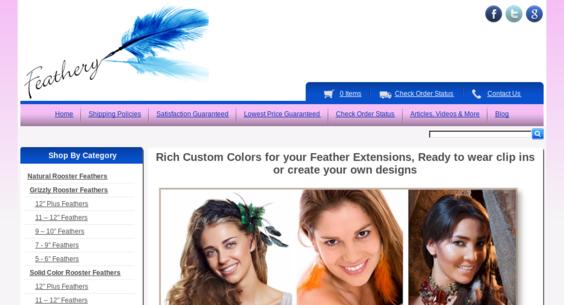 Website regular 2785827