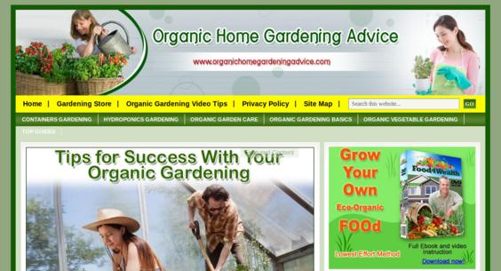 Website regular 2865933