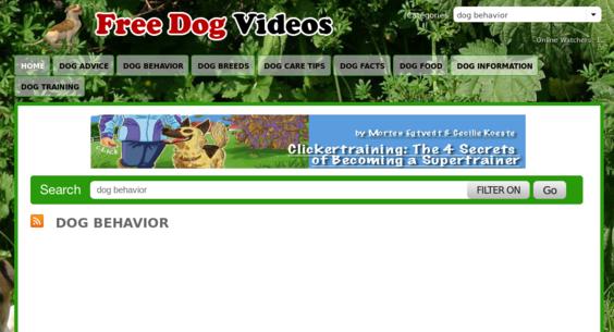 Website regular 2869665