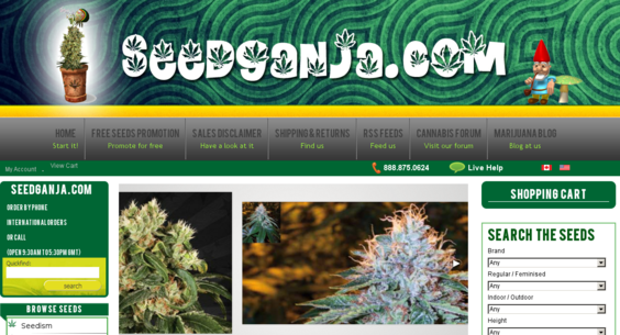 seedganja com — Website Listed on Flippa: Custom designed