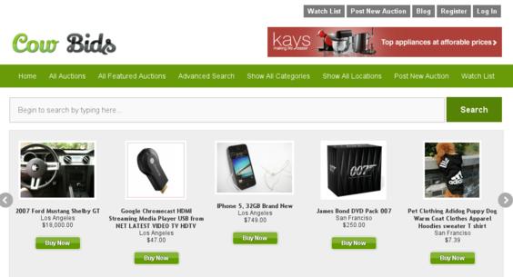 create killer auction selling website money