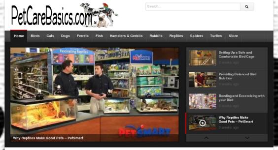 Website regular 3089016