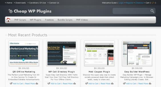 Website regular 3111258