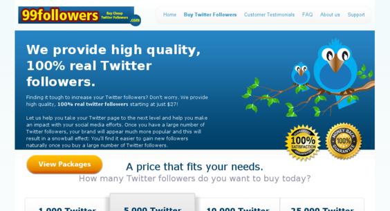 Website regular 3127225