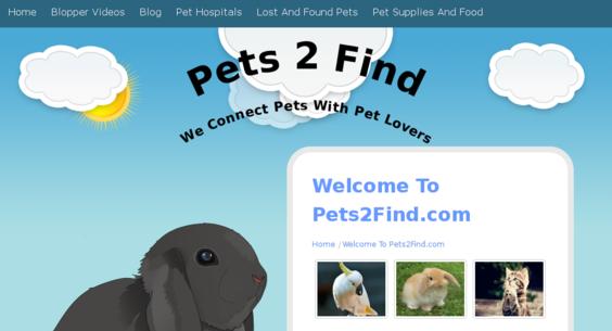 Website regular 3127314