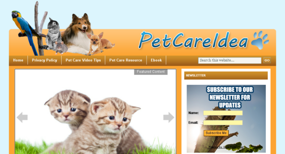 Website regular 3128460