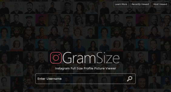 GramSize com — Starter Site Sold on Flippa: No Reserve