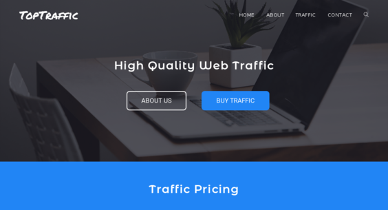 TopTraffic co — Website Listed on Flippa: Two Websites with