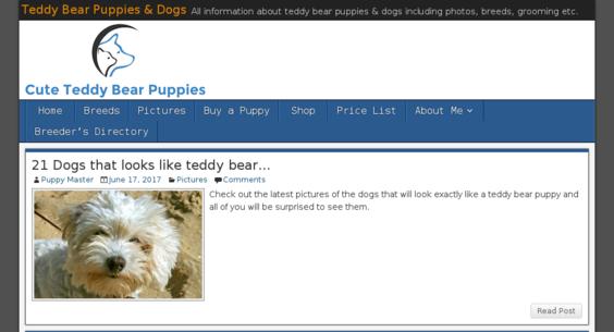 CuteTeddyBearPuppies com — Website Sold on Flippa: Cute Dog