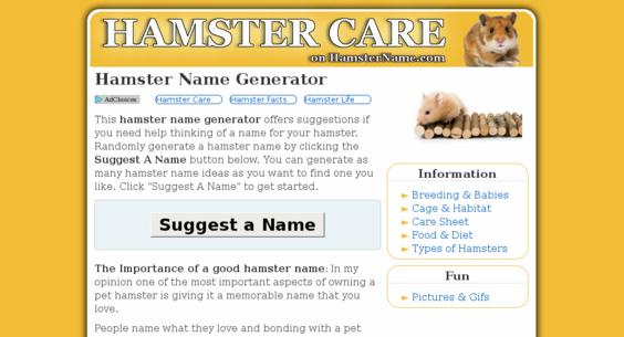 hamster name