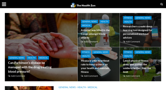 thehealthzen com — Starter Site Sold on Flippa: Google News Approved