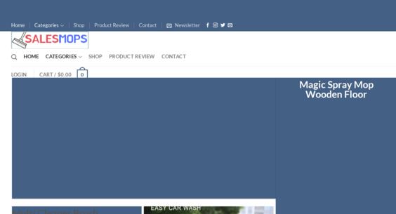SalesMops com — Starter Site Listed on Flippa: Cleaning Mop